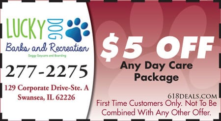 5 off any day care package swansea il