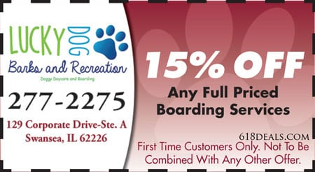 holiday pet boarding swansea il